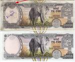 error rs 1000 note